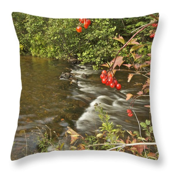 High Bush Cranberry 7823 Throw Pillow by Michael Peychich