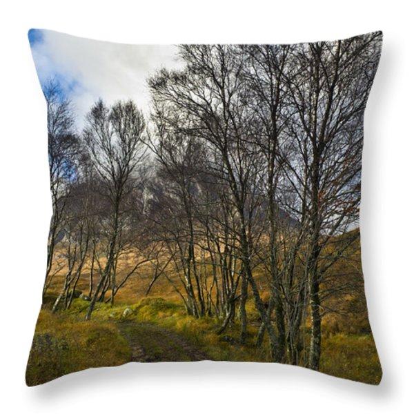 Highland highway Throw Pillow by Gary Eason