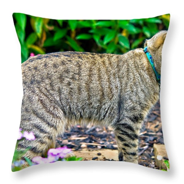 Highland Lynx Cat In Garden Throw Pillow by Susan Leggett