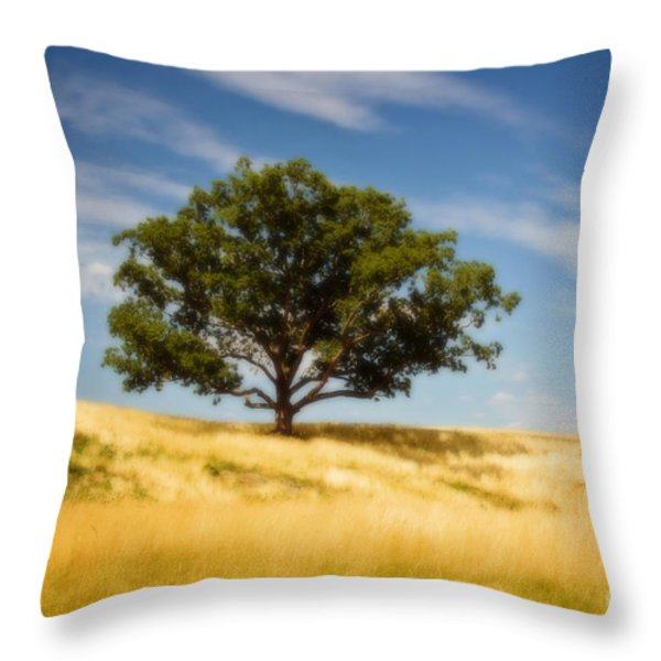 Hill Top Beauty Throw Pillow by Scott Pellegrin