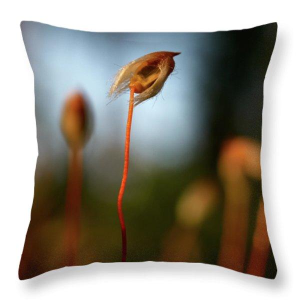 Hippie Throw Pillow by Jouko Lehto