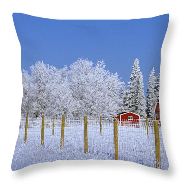 Hoarfrost On Trees Around Red Barns Throw Pillow by Mike Grandmailson