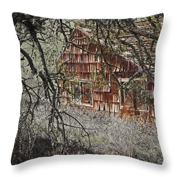 Home Sweet Home Throw Pillow by Mick Anderson