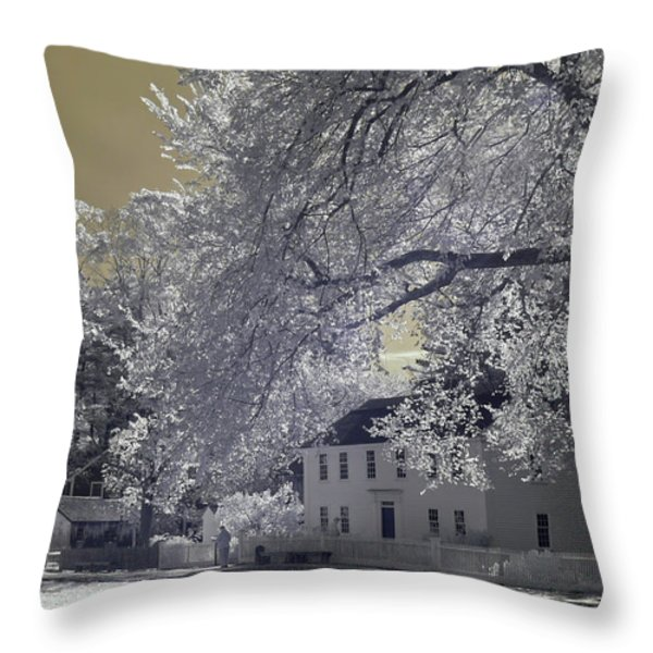 Homestead Throw Pillow by Joann Vitali