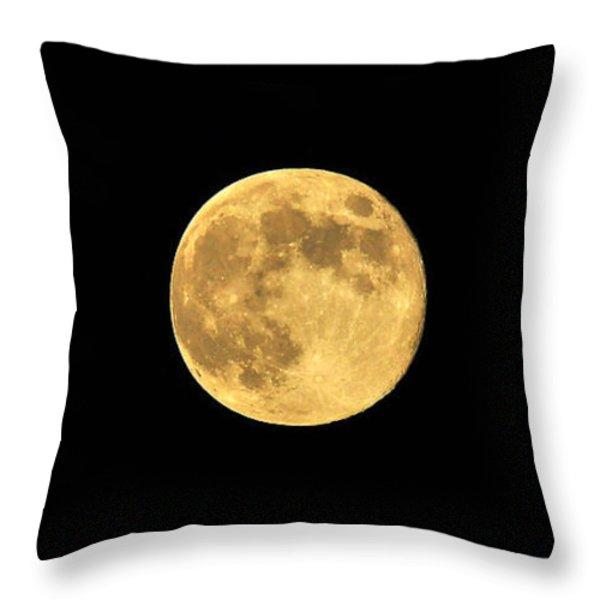 Honey Moon Throw Pillow by Al Powell Photography USA