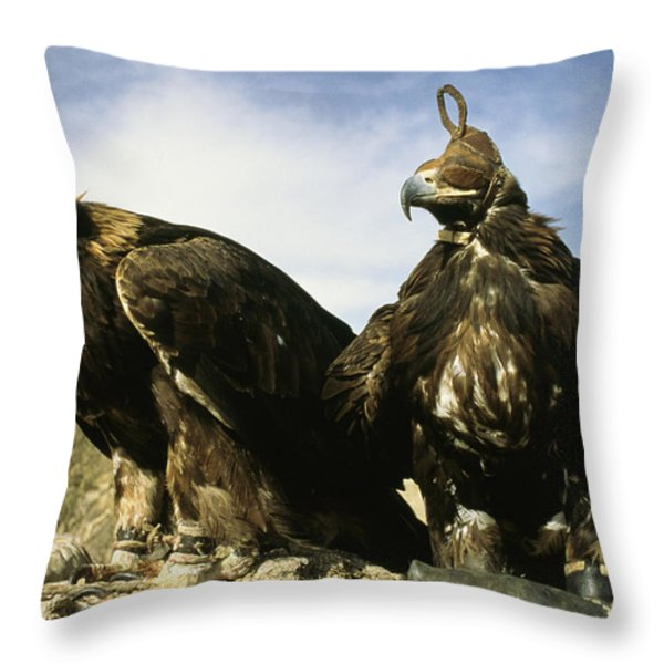 Hooded Eagles Stand Ready For Hunting Throw Pillow by Ed George