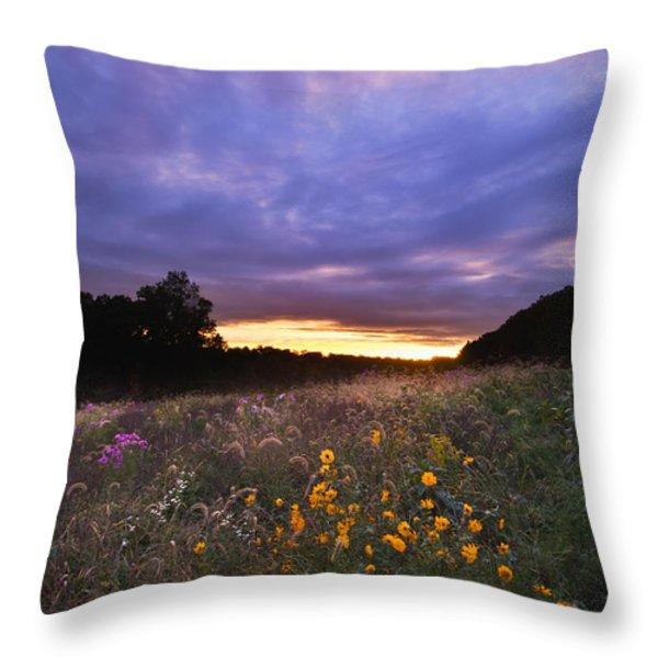 Hoosier Sunset - D007743 Throw Pillow by Daniel Dempster