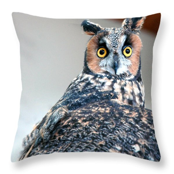 Hooter  Throw Pillow by LeeAnn McLaneGoetz McLaneGoetzStudioLLCcom