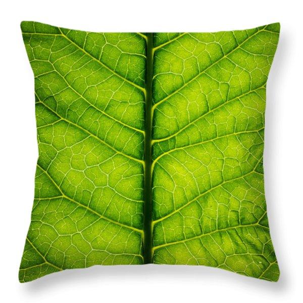 Horseradish Leaf Throw Pillow by Steve Gadomski
