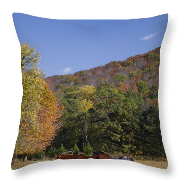 Horses and Autumn Landscape Throw Pillow by Kathy Clark