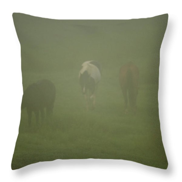 Horses Grazing In The Mist Throw Pillow by Steve Gadomski