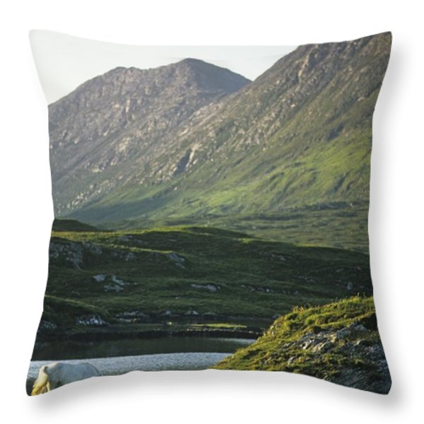 Horses Grazing On A Landscape, County Throw Pillow by The Irish Image Collection