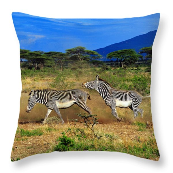 Horsing Around Throw Pillow by Tony Beck