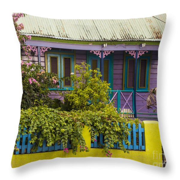 House Of Colors Throw Pillow by Rene Triay Photography