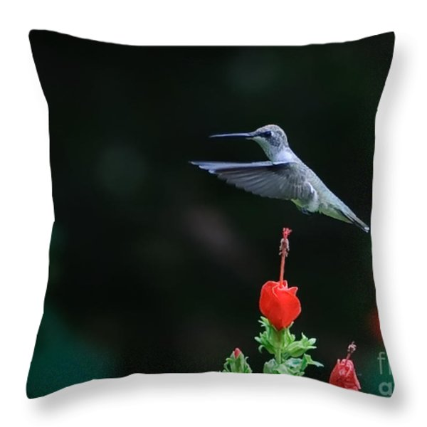 HOVER Throw Pillow by Charles Dobbs