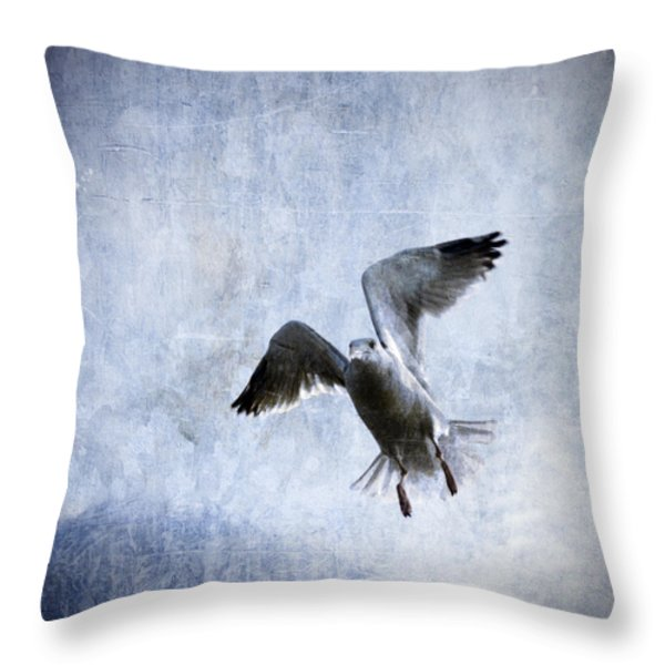 Hovering Seagull Throw Pillow by Carol Leigh