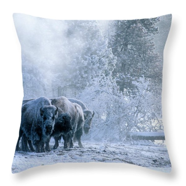 Huddled For Warmth Throw Pillow by Sandra Bronstein