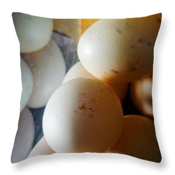 Huevo Throw Pillow by Skip Hunt