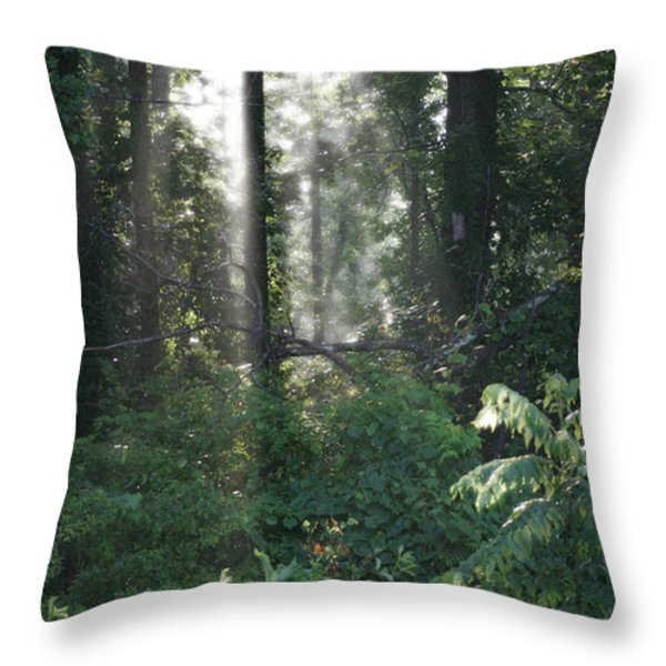 Humid Throw Pillow by Cris Hayes