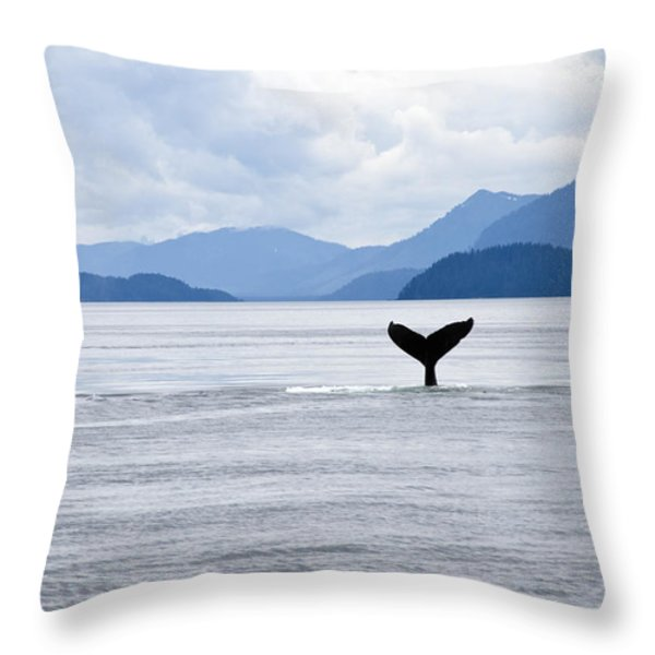 Humpback Whale Megaptera Novaeangliae Throw Pillow by James Forte