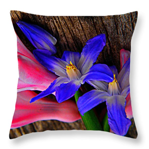 Hunt And Gather Throw Pillow by Chris Berry