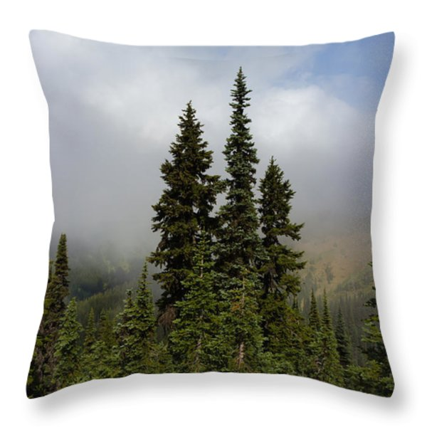 Hurricane Ridge Beauty Throw Pillow by Heidi Smith
