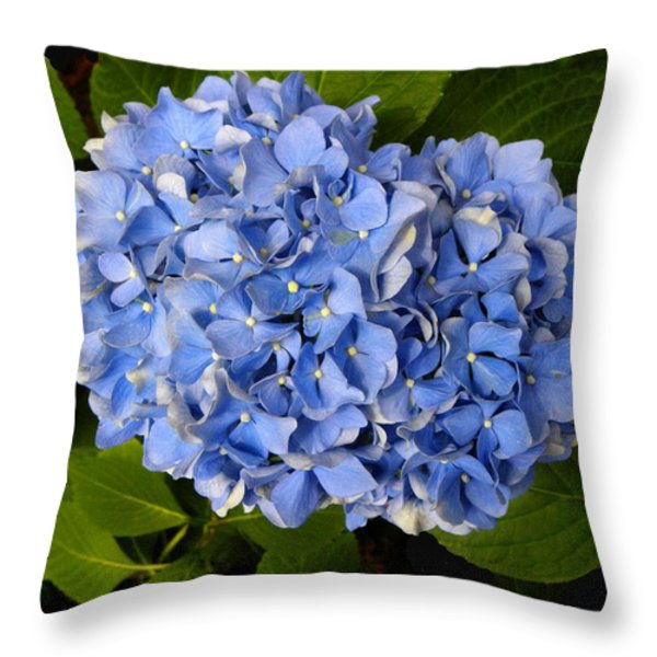 Hydrangea Throw Pillow by Sandi OReilly