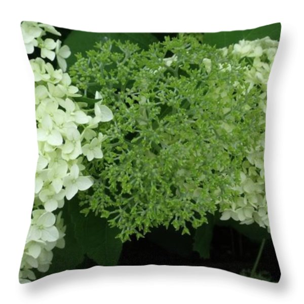 Hydrangeas 2011 Throw Pillow by Anna Villarreal Garbis