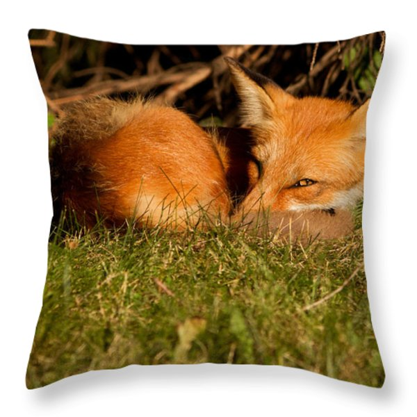 I can see you Throw Pillow by Mircea Costina Photography