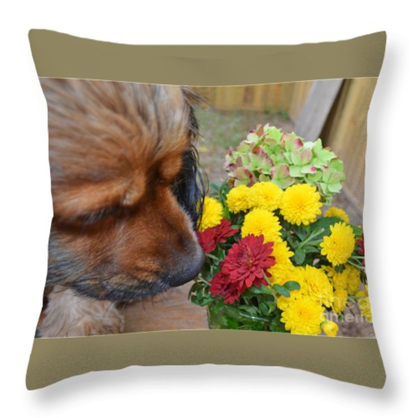 I Like The Red One  Throw Pillow by Debbie Portwood