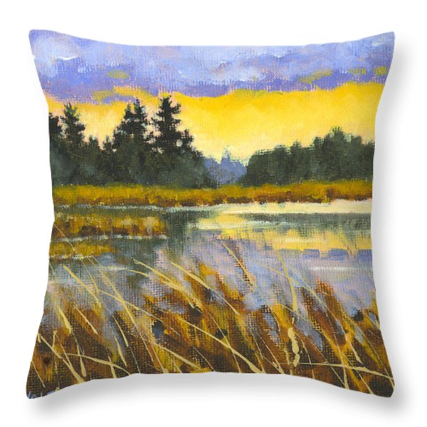 I Saw The Light Throw Pillow by Richard De Wolfe