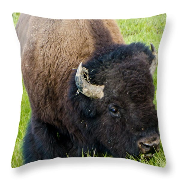 I See You Throw Pillow by Jon Berghoff