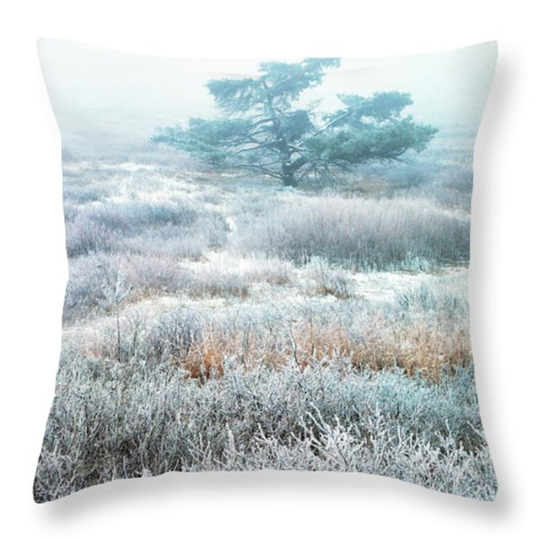 Ice Tree Shenandoah National Park Throw Pillow by Thomas R Fletcher