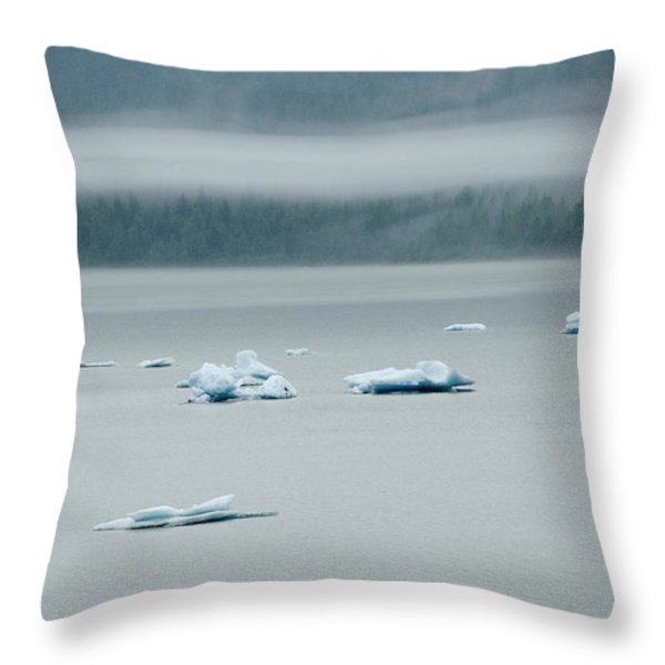 Icebergs Floating In The Sea Throw Pillow by James Forte