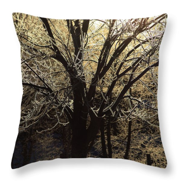 Iced Throw Pillow by Karol  Livote