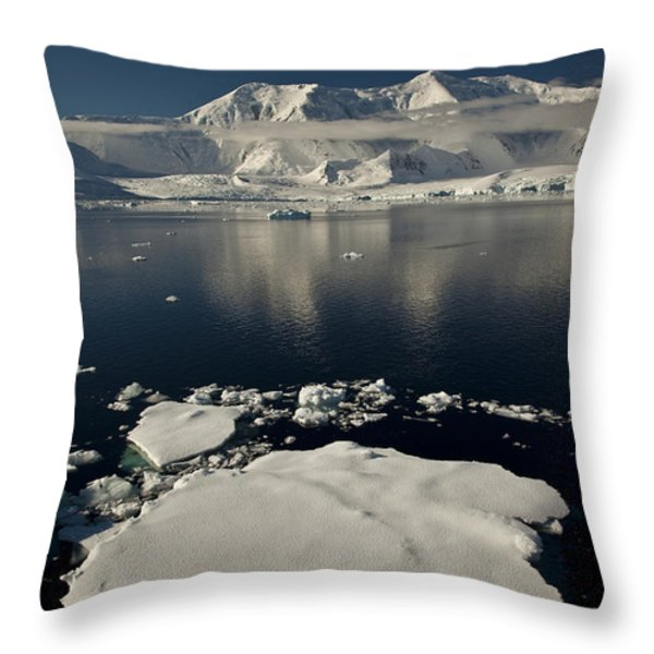 Icefloe In The Neumayer Channel Throw Pillow by Colin Monteath