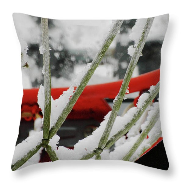 Icy Hoop Dreams Throw Pillow by Anahi DeCanio