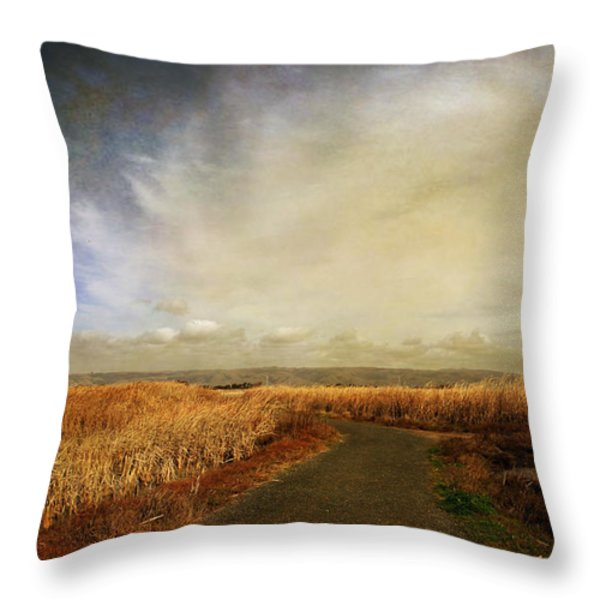 If I Could See Into The Future Throw Pillow by Laurie Search