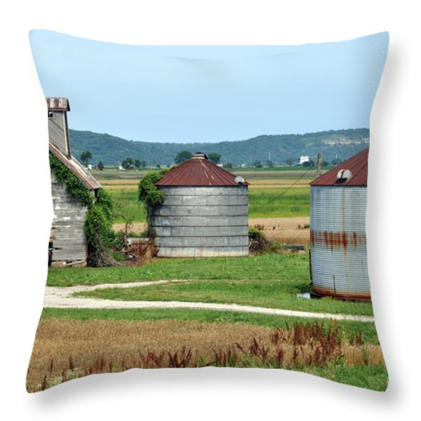 Ilini Farm Throw Pillow by Marty Koch