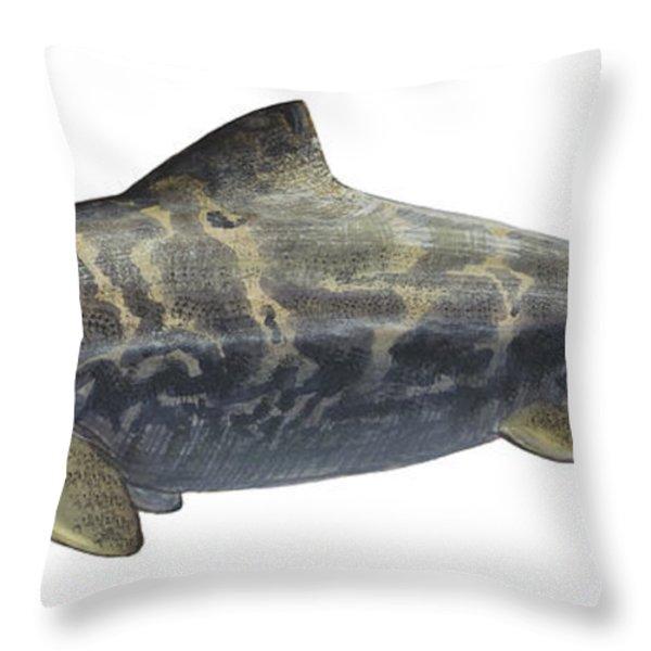 Illustration Of A Prehistoric Throw Pillow by Sergey Krasovskiy