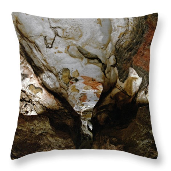 Images Of The Extinct Aurochs Cover Throw Pillow by Sisse Brimberg