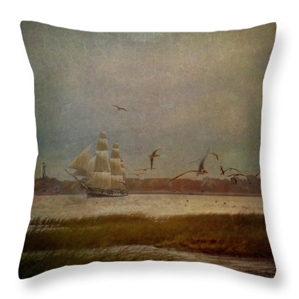 In Another Lifetime Throw Pillow by Lianne Schneider