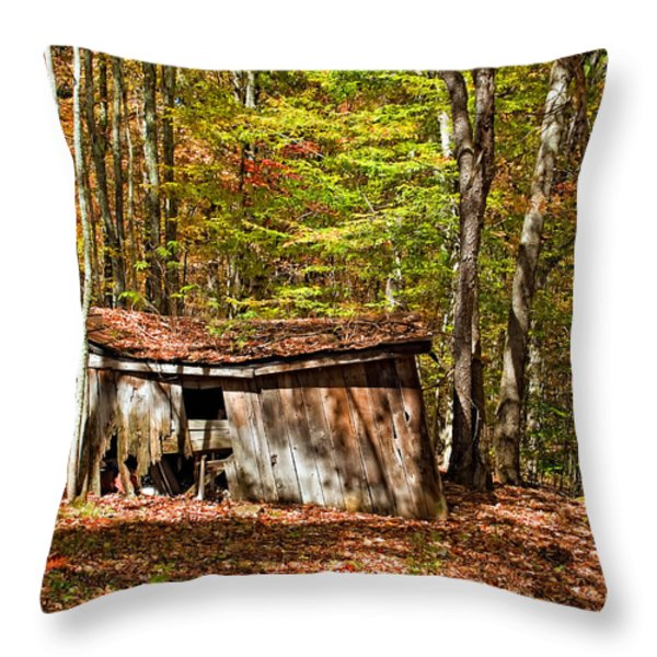 In Autumn Woods Throw Pillow by Steve Harrington