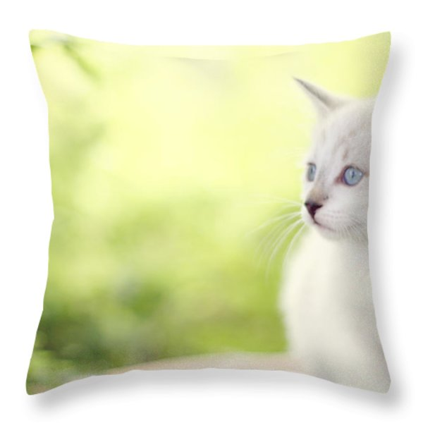 In Her Eyes Throw Pillow by Amy Tyler