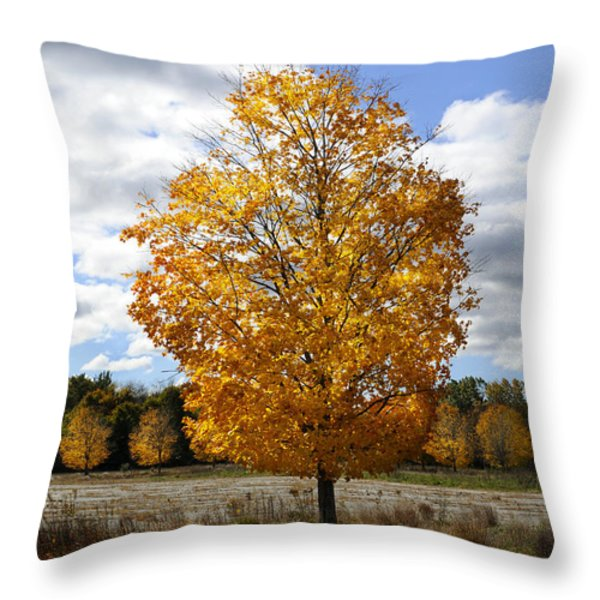 In My Dreams... Throw Pillow by Luke Moore