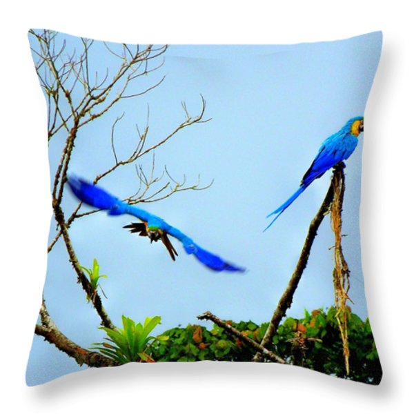 In The Wild Throw Pillow by Karen Wiles