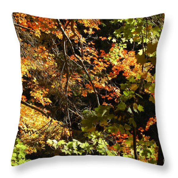 In The Woods Throw Pillow by Kathleen Struckle