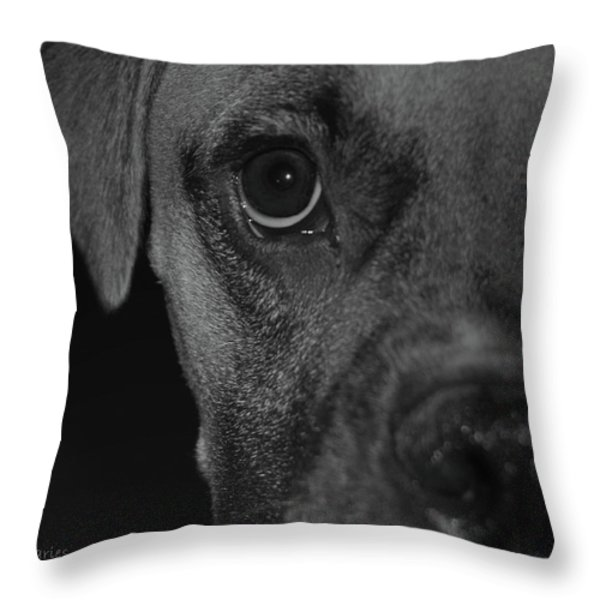 In Your Face Throw Pillow by DigiArt Diaries by Vicky B Fuller