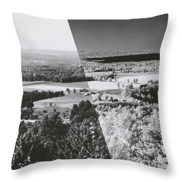 Infrared Comparison Throw Pillow by Omikron