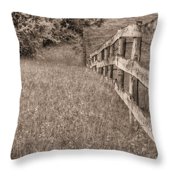 Into The Distance Bw Throw Pillow by JC Findley